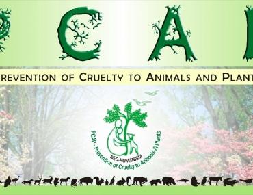 Protezione piante e animali